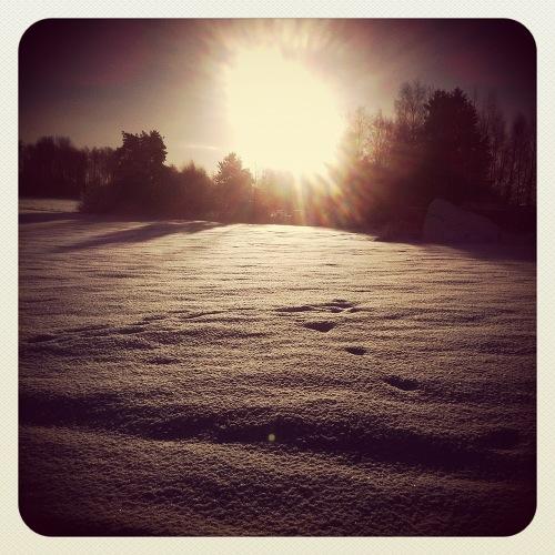 vinter1