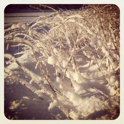 vinter3